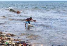 Photo of Tema Newtown Beach: The 'new normal' destroying livelihoods