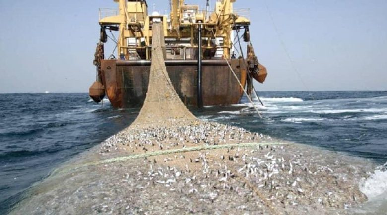 A picture representation of illegal transshipment of fish at sea (Saiko) culled from Ghana News Agency