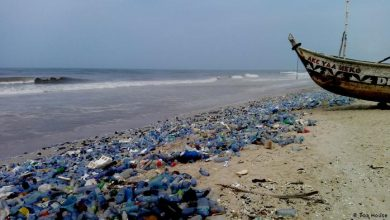 Photo of Africa must lead the charge against marine pollution